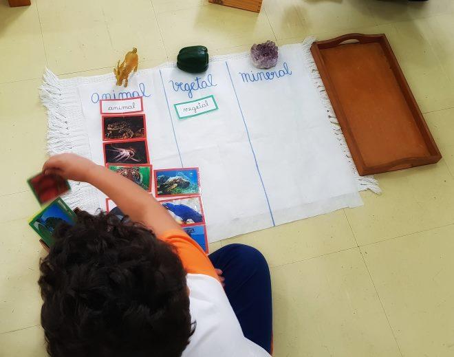 metodo-montessori-escola-montessoriana-4-1